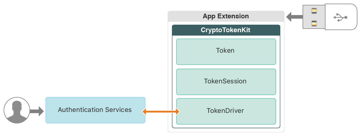 Diagram showing the interconnections between the user, authentication services, your app extension, and the external smart card.