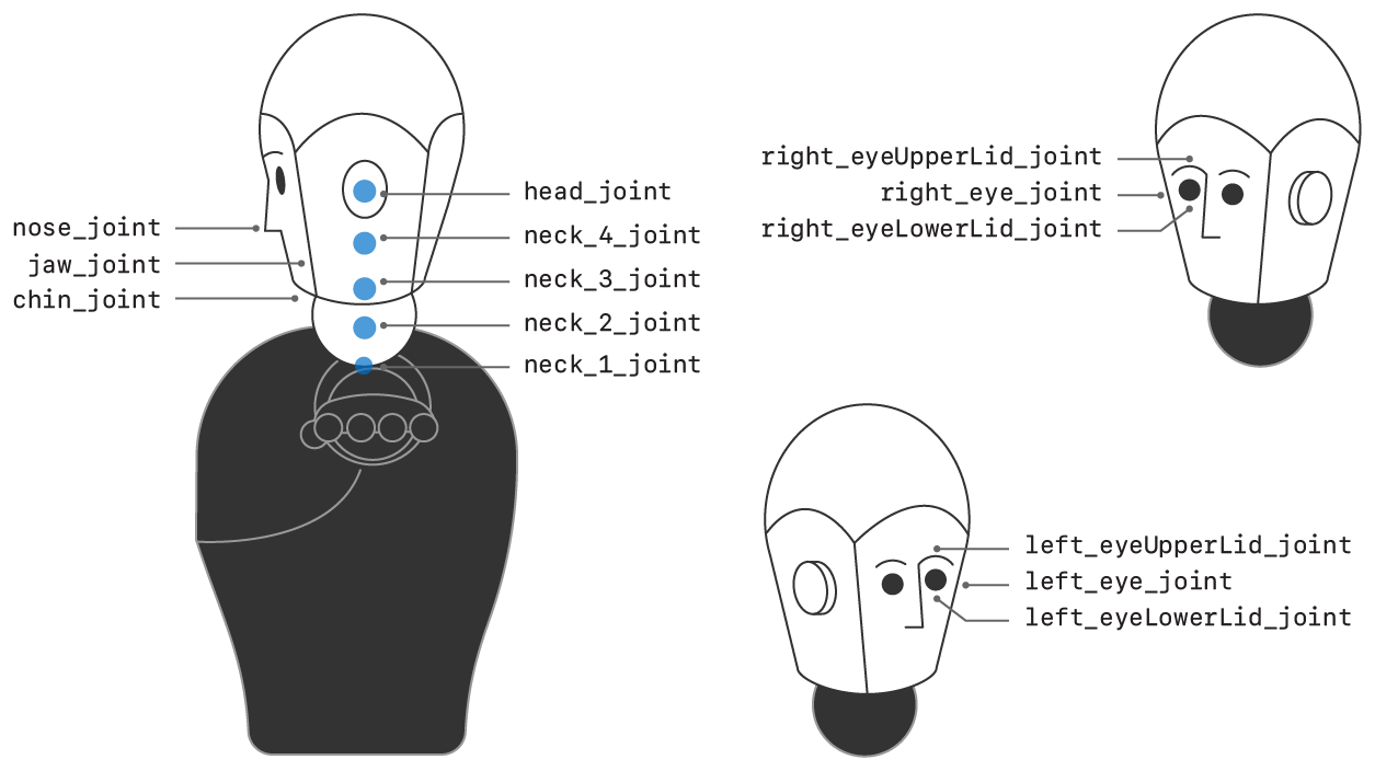 Illustration showing just the head and neck portion of the humanoid character, with the joint names labeled.
