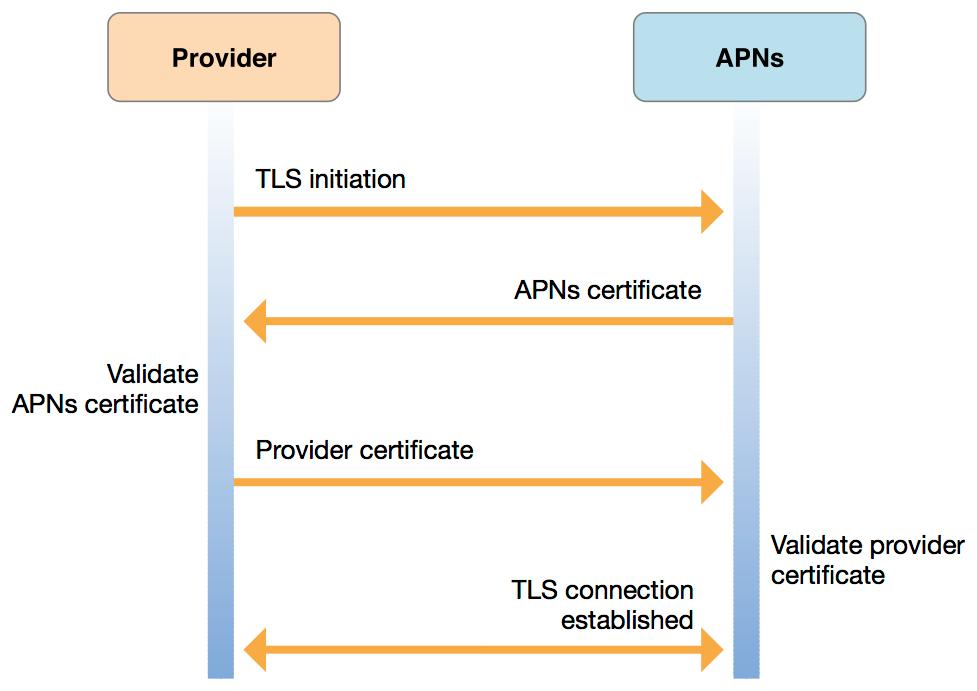 Establish trust through TLS by exchanging certificates with APNs.