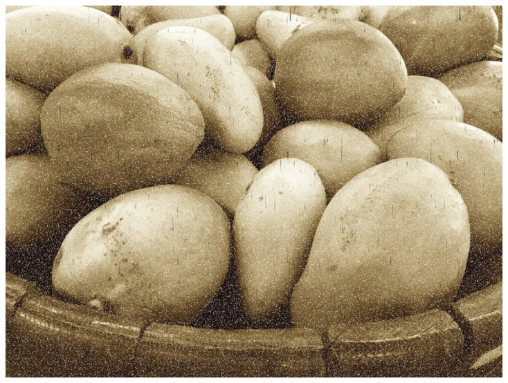 Sepia-toned image of fruit augmented with speckle grain and dark scratches.