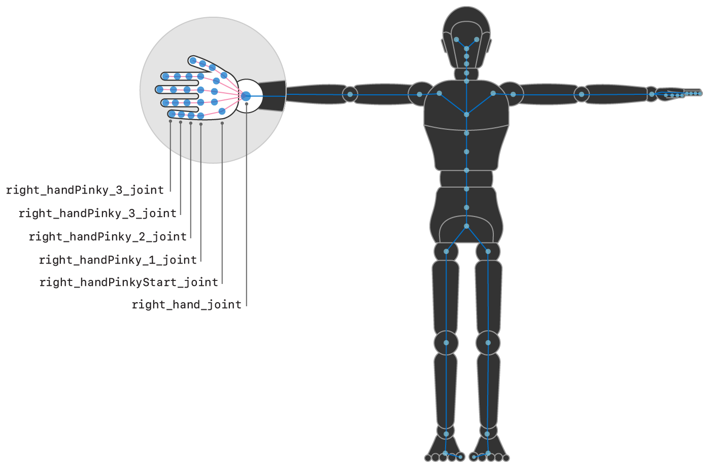 Illustration showing the right hand of the humanoid figure highlighted, with some of the joints named.