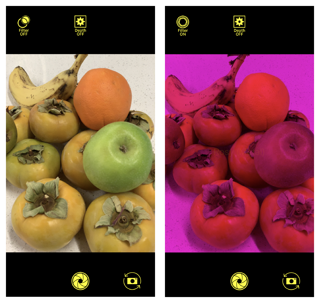 Screenshots of AVCamFilter with the rose-colored filter applied to the camera preview.