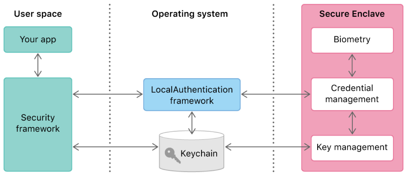 Diagram showing the relationships among the Security and LocalAuthentication frameworks, and the Secure Enclave, to securely store keychain items.