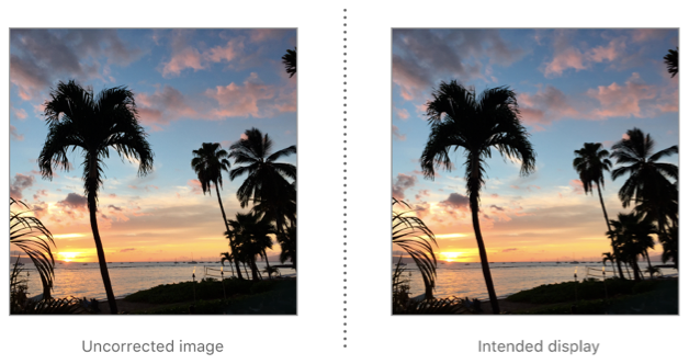 An image in up orientation can be presented for display without rotating or flipping.