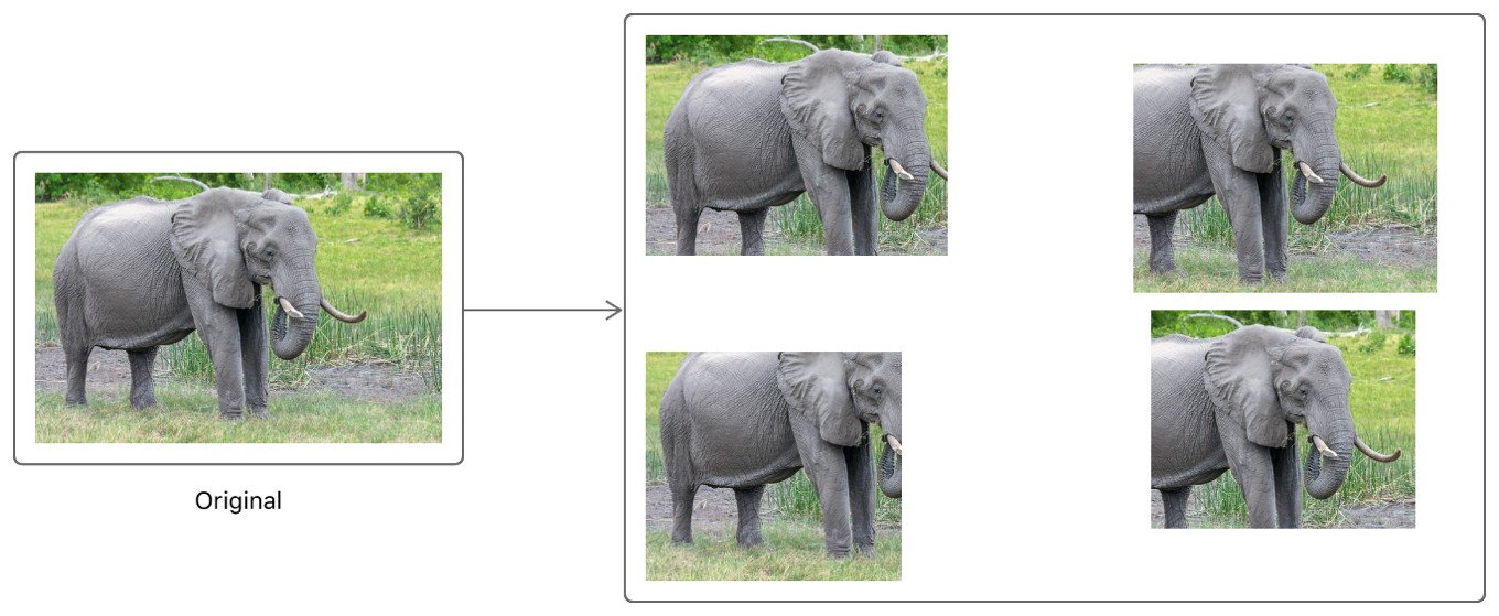Diagram showing how the original image results in four cropped variants.