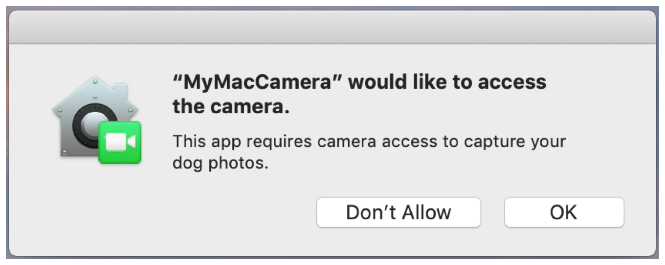Screenshot of macOS camera permission alert with app-specific message.