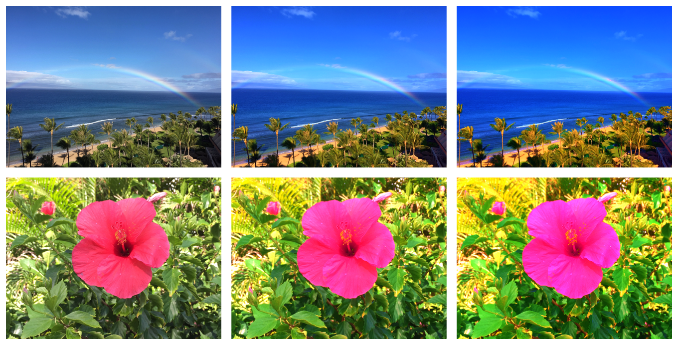 Two photographs arranged in two rows. Each row contains three variations of the photographs that transition from unchanged to very saturated.