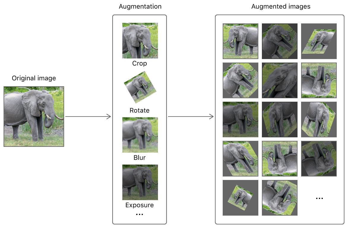 A figure showing a single image of an elephant becoming many images by applying augmentations such as crop, rotate, blur, and expose to the image.