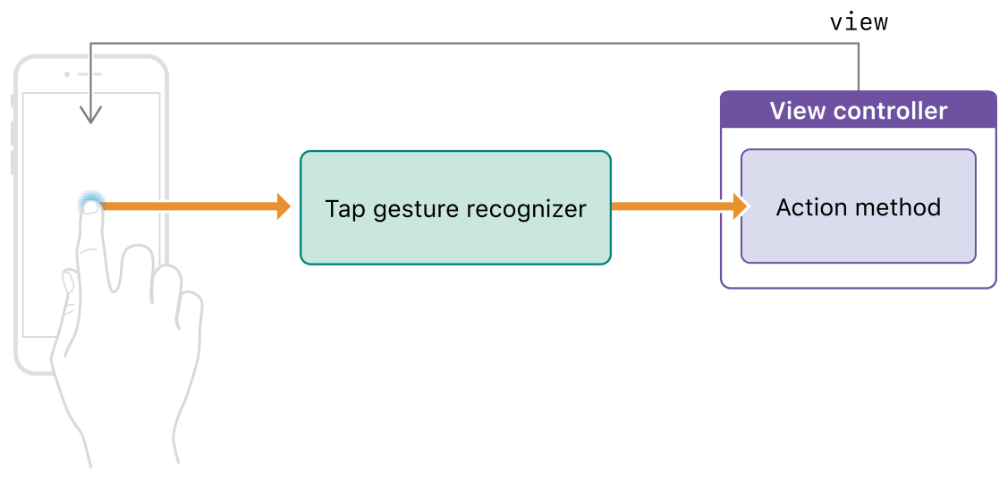 A diagram demonstrating how a gesture recognizer links user interactions with your view controller action methods.