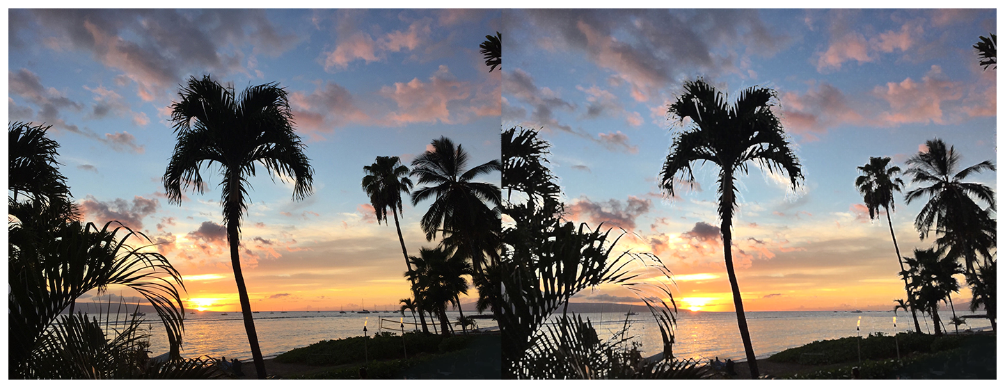 Two photographs of a beach at sunset with multiple palm trees. The photo on the left is clear and crisp. In the photo on the right, a morphology rectangle maximum blur has been applied, resulting in the palm trees becoming lighter and less distinct.