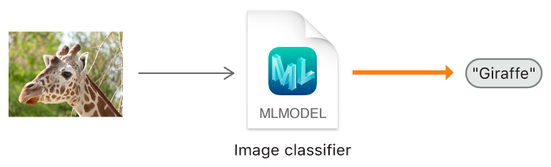"Diagram showing how an image classifier predicts the label ""Giraffe"" from an image of a giraffe."