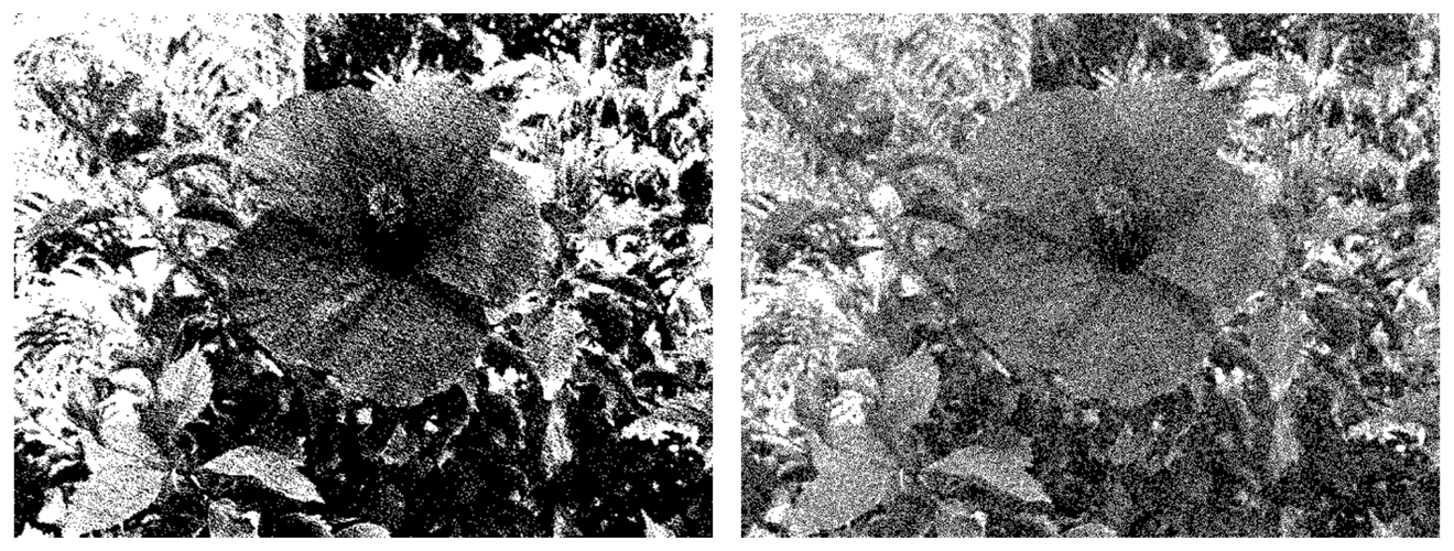 Photos showing images with different noise distributions applied during dithering.