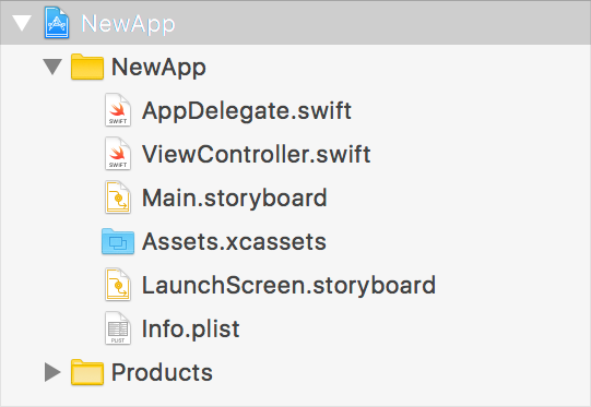 The template for a new single view app contains source files for an app delegate and view controller. It also contains storyboard, asset catalog, and Info.plist files.