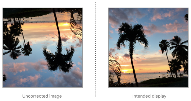 To correct an image with down orientation for display, rotate it 180°.