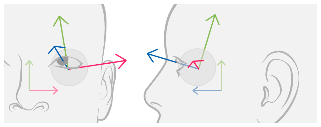 Diagram showing the coordinate axis origin defined by the leftEyeTransform, representing both the position and rotation of the eye relative to the face anchor.