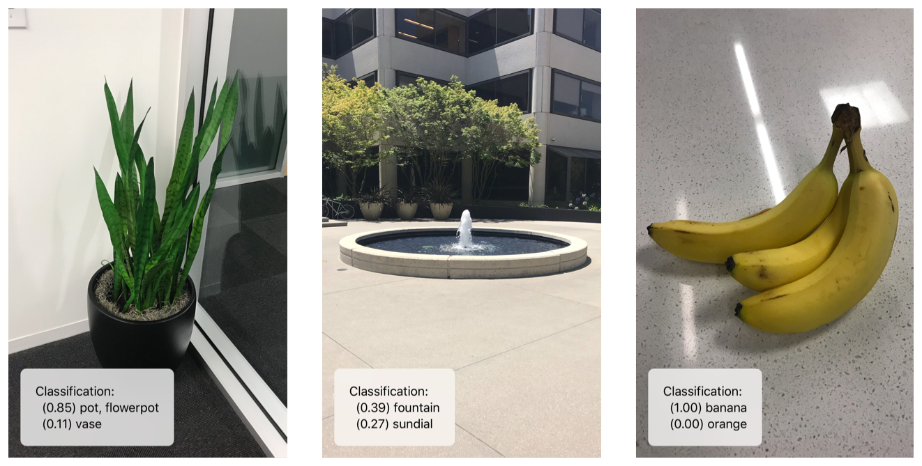 example screenshots of app identifying a potted plant, a fountain, and a bunch of bananas