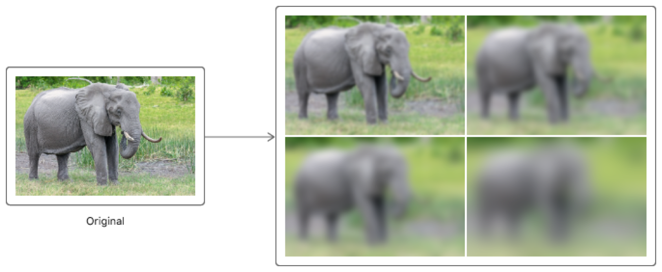 Diagram showing how the original image results in four blurred variants.