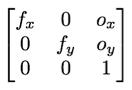 The camera intrinsics matrix with focal length along the main diagonal